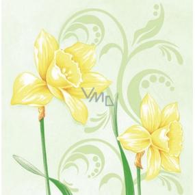 Ditipo Papierové obrúsky 3 vrstvové 33 x 33 cm 20 kusov Veľkonočné Narcisy