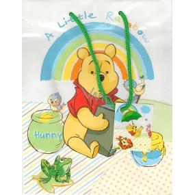Ditipo Disney Dárková papírová taška dětská L Medvídek Pú A Little Rainbow 32,5 x 13,5 x 26,3 cm 2902 006