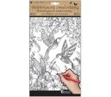 Kreatívne maľovanky motýle a vtáky 6 motívov, 6 listov 36,5 x 21,5 cm
