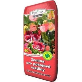 Rašelina Soběslav Zemina pro pokojové rostliny 40 l