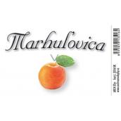 Arch Samolepka Marhulovica veľká etiketa 8,5 x 5,5 cm 3516-SK