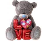 Me to You Medvídek s písmeny Love 50 cm