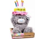 Me to You Medvedík narodeninovú klobúk 14 cm