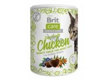 Brit Care Cat Snack Chrumkavý kuracie maškrtu s rakytníkom a čučoriedkami doplnkové krmivo pre dospelé mačky 100 g