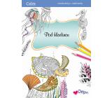 Ditipo Calm Pod hladinou relaxačné maľovanky A4 32 strán