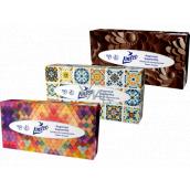 Linteo Satin papierové vreckovky 2 vrstvové 100 kusov krabička