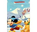 Taška darčeková detská L Disney Mickey Mouse a Pluto na korčuliach