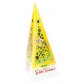 Vánoční balení zeleného čaje, med a skořice 20 x 2 g