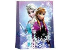BSB Luxusní dárková papírová taška pro děti 22,9 x 17,5 x 9,8 cm Frozen DT M