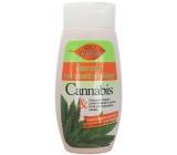 Bion Cosmetics Cannabis šampón na mastné vlasy 260 ml