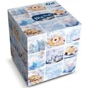 Big Soft Winter papierové vreckovky biele 2 vrstvové 75 kusov