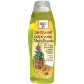 Bion Cosmetics Med & Propolis Dentamint ústna voda 500 ml