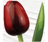 Bohemia Gifts Dřevěný tulipán tmavě červený 34 cm
