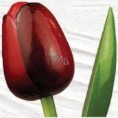 Bohemia Gifts & Cosmetics Dřevěný tulipán tmavě červený 34 cm