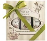 Bohemia Tea Spa s extraktem zeleného čaje Koupelová lázeň 250 ml + Sprchový gel 200 ml + Vlasový šampon 200 ml, kosmetická sada