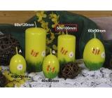 Lima Jarní motiv svíčka žlutá válec 50 x 100 mm 1 kus