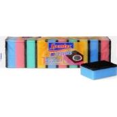 Spontex 10 Colors PU hubka na riad s drôtenkou 10 kusov