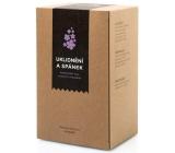 Aromatica Uklidnění a spánek bylinný čaj 20 x 1,5 g