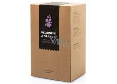 Aromatica Upokojenie a spánok bylinný čaj 20 x 1,5 g