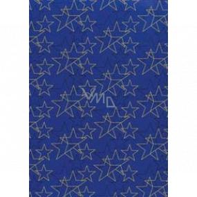 Ditipo Darčekový baliaci papier 70 x 200 cm Vianočné modrý zlaté a čierne hviezdy