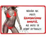 Nekupto Humor po Česku humorná cedulka 036 15 x 10 cm 1 kus