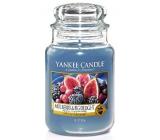 Yankee Candle Mulberry & Fig Delight - Lahodné moruše a figy vonná sviečka Classic veľká sklo 623 g