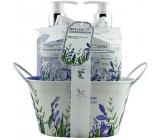 Salsa Collection Levanduľa, šalvia a mäta sprchový gél 250 ml + pena do kúpeľa 250 ml + toaletné mydlo 100 g, kozmetická sada v kovovom kvetináči