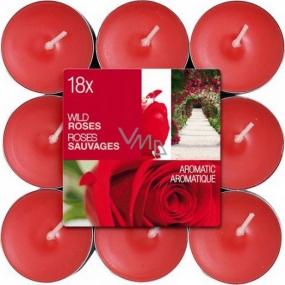Bolsius Aromatic Wild Rose - Divoká Ruža vonné čajové sviečky 18 kusov, doba horenia 4 hodiny