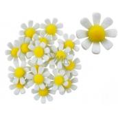 Kvety z filcu s Lepik bielej dekorácie 3,5 cm v krabičke 18 kusov