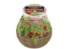 Bolsius Citronela v skle desing Bylinky cherry paradajky vonná sviečka 90 x 94 mm