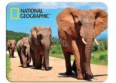 3D mafnet - Africkí slony 9 x 7 ml