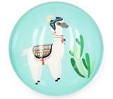 Nekupto Magnet tyrkysová koliesko Lama, kaktus 4 cm