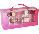 Heart & Home Jar 2020 Granátové jablko + Ruže s malinami difuzér 2 x 40 ml, 2 x 6 tyčiniek, darčeková sada