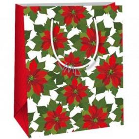 Ditipo Darčeková papierová taška 11,5 x 6,5 x 14,5 cm biely podklad Vianočná hviezda E
