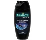 Palmolive Men Refreshing 2v1 sprchový gél 250 ml