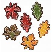Listy z filcu s lepíkem 5 cm, 6 kusů