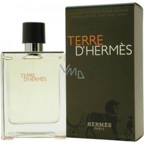 Hermes Terre D´Hermes toaletní voda pro muže 50 ml