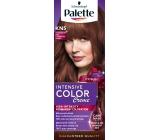 Schwarzkopf Palette Intensive Color Creme barva na vlasy KN5 Jahodově hnědý