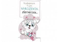 Nekupto Prianie k narodeninám Zostaň COOL psík 116 x 220 mm 3493 K