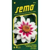 Semo Ostálka Zahara Starlight Rose 15 semen
