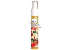 Bion Cosmetics Vianočné vôňa sprej 30 ml