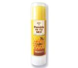 Bion Cosmetics Med pomáda na pery 17 ml