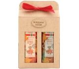 Bohemia Gifts & Cosmetics Herbs Castanum Extrakt z kaštanu koňského sprchový gel 250 ml + šampon na vlasy 250 ml, kosmetická sada