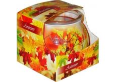 Admit Autumn - Podzim dekorativní aromatická svíčka ve skle 80 g