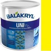 Balakryl Uni Mat 0620 Žltý univerzálna farba na kov a drevo 700 g