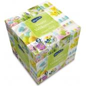 Big Soft Velikonoční papírové kapesníky bílé 2 vrstvé 75 kusů