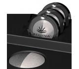 Regina Duo minerálne očné tiene 03 svetlosivá / perleť 3,5 g