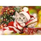 Nekupto Pohľadnica vianočné Koťátko 15 x 11 cm