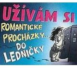 Nekupto Dárky s humorem Magnet ledničkový Užívám si romantické 23 x 12 cm WM 008