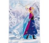 BSB Disney Dárková papírová taška dětská 45,7 x 33 x 10,2 cm Frozen s glitry DT XL